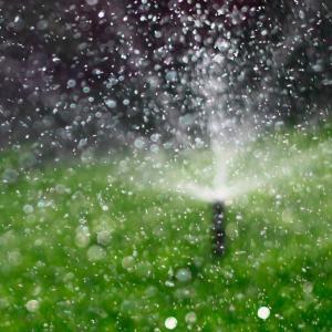 Reutilizar el Agua para Riego mlab 1