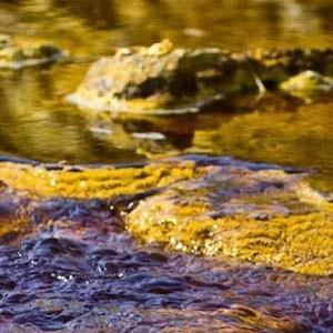 analisis de vertidos en agua 1 @analisis de vertidos en agua 3